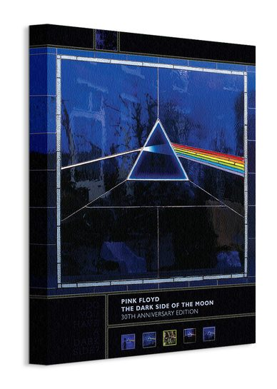 Pink Floyd (Dark Side Of The Moon 30th Anniversary) - Obraz na płótnie