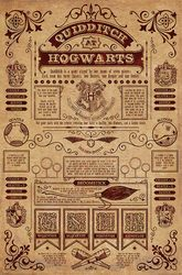Harry Potter Quidditch At Hogwarts - plakat filmowy