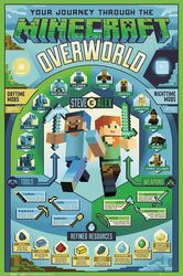 Minecraft Overworld Biome - plakat