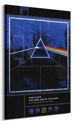Pink Floyd Dark Side Of The Moon 30th Anniversary - obraz na płótnie