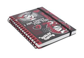 Harley Quinn I Am Crazy For You - notes A5